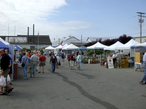 steveston farmer\'s market